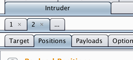 Burp Suite intruder positions
